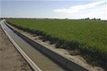 irrigation-ditch_thumb_thumb.jpg