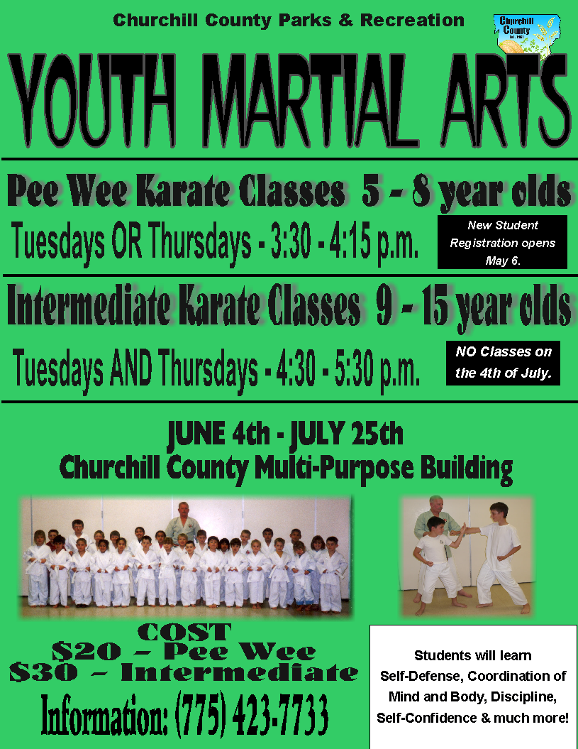 Martial Arts (2019) - Flyer (Digital).png